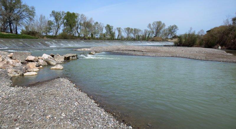 Pesca in acqua dolce nel fiume Ombrone