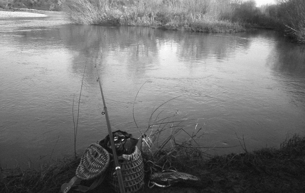 pesca con le budellina